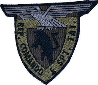 Toppa Reparto Comando e supporto tattico taurinense