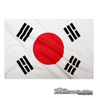 Bandiera Corea Del Sud In Poliestere Leggero